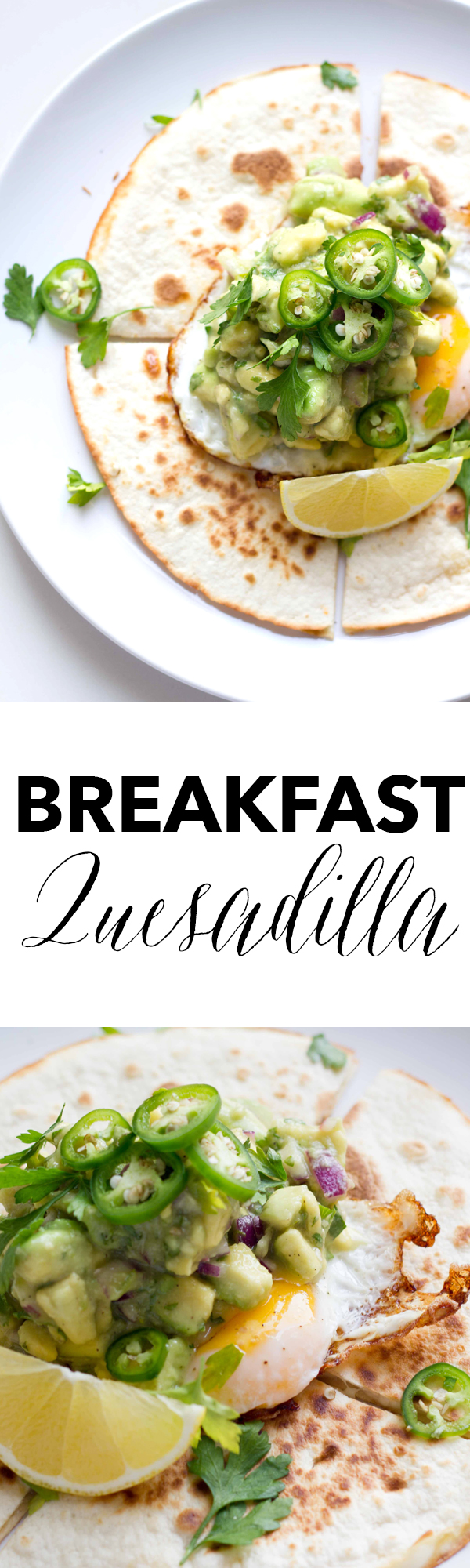 This breakfast quesadilla recipe is filled with melted mozzarella cheese, topped with a fried egg and some spicy guacamole. It definitely packs a breakfast punch! www.seriousspice.com